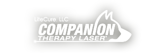 litecurecompanion-logo-copy.png